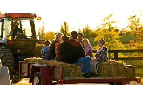 hay ride fall bucket list for students