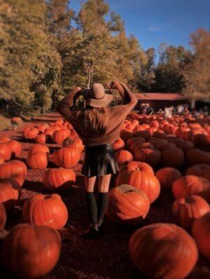 fall bucket list pumpkin farm