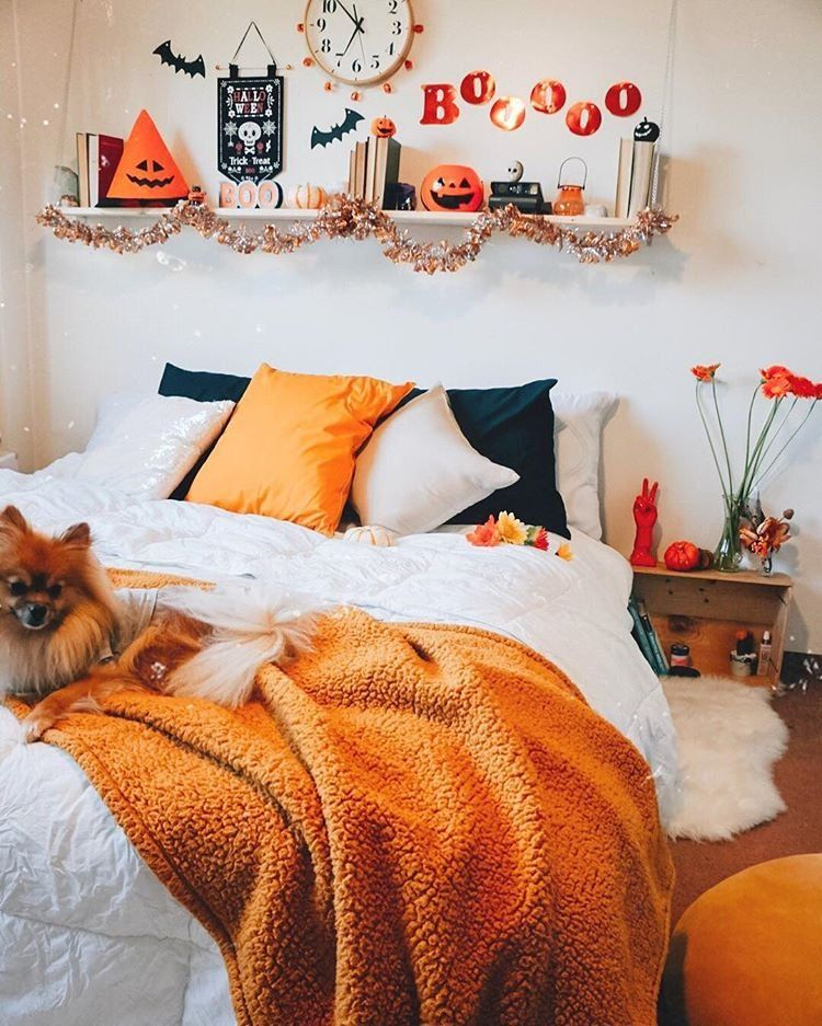 fall dorm room decor ideas