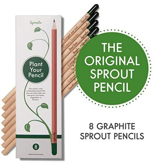 tree pencils stocking stuffers