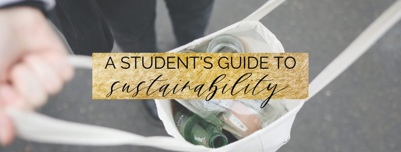 a student's guide to sustainability and zero waste | be eco friendly in college
